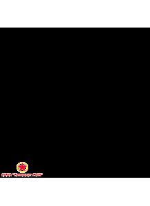 Вентилятор электроручной ЭРВ 600/300 фото
