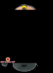 Гражданский противогаз ГП-9 с маской МПГ-ИЗОД фото