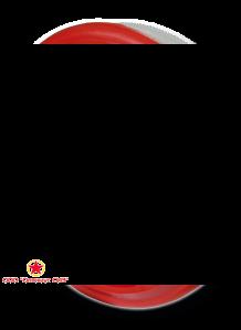 Фильтры противоаэрозольные БРИЗ-1001 (ФА-2002) фото