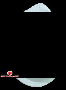 Респиратор противоаэрозольный Бриз-1104-2К фото