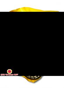 Универсальный фильтрующий малогабаритный самоспасатель (УФМС) «Шанс» -Е с четвертьмаской (детская модель) фото