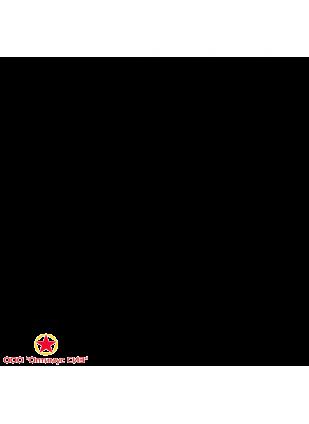 Вентилятор электроручной ЭРВ 600/300