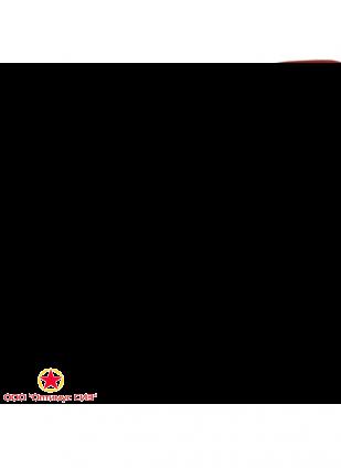 Огнетушитель ОП-0,5 (з) АВСЕ Сувенирный фото