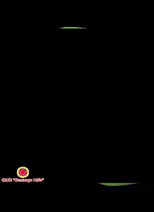 Противоаэрозольный респиратор БРИЗ-1102 (У-2К) (70/30) фото