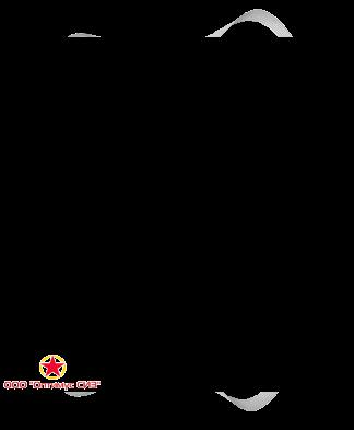 Полумаска фильтрующая респиратор RUTEX F2101 FFP2 NR D