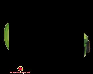 Очки с непрямой вентиляцией ЗН4 ЭТАЛОН
