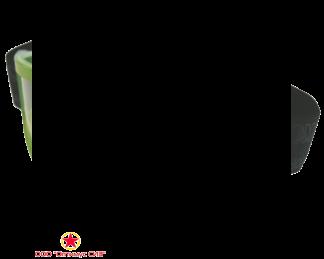 Очки защитные ЗН11 PANORAMA (PL) фото