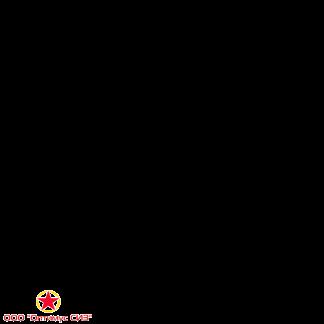 Щит пожарный закрытый металлический с окнами